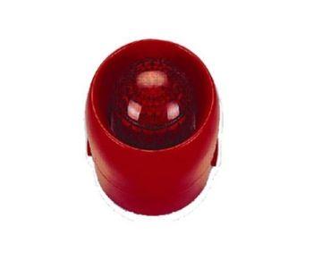 Còi Đèn Chớp